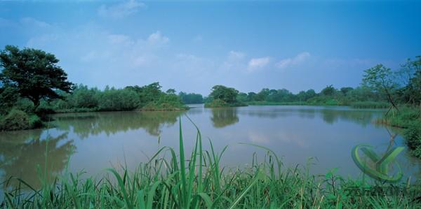 杭州国家西溪湿地公园